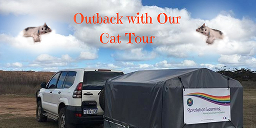 Outback With Our Cat Tour